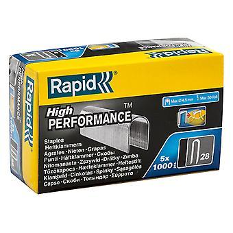 Rapid 28/10 10mm DP x 5m Galvanised Staples Box 5 x 1000 RPD2810G
