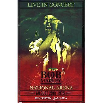Bob Marley - concerto Poster Poster Print