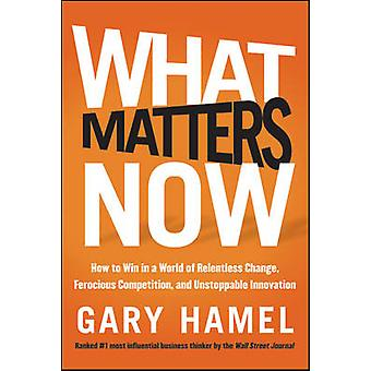 What Matters Now - How to Win in a World of Relentless Change - Feroci