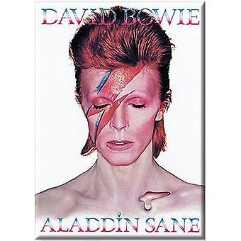 David Bowie Aladdin Sane kylskåpsmagnet