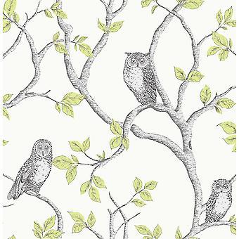 Corujas de floresta wallpaper Fine decor