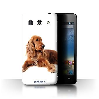 STUFF4 Case/Cover for Huawei G520/Cocker Spaniel/Dog Breeds