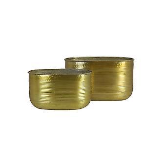Light & Living Flower Pot Set Of 2 23x38x21.5 And 26.5x47x26.5cm Matala Gold