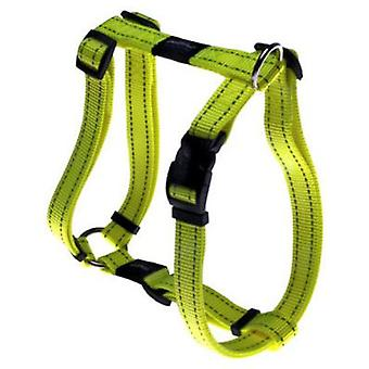 Rogz Harness Fanbelt (Dogs , Collars, Leads and Harnesses , Harnesses)