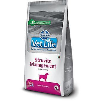 Farmina ammatillisen elämän struviittiperäisen hallinta koira