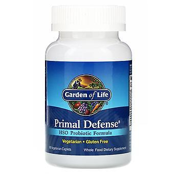 Tuin van het Leven, Primal Defense, HSO Probiotische Formule, 90 Vegetarische Caplets