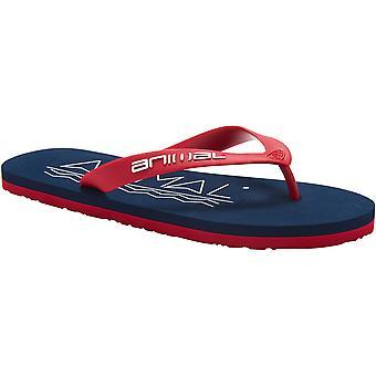 Dierlijke Mens Costaz Logo gegoten Comfort EVA Footbed Flip Flop sandalen