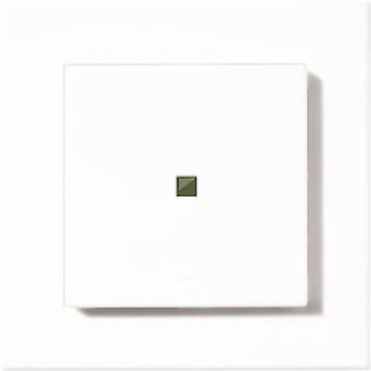 Homematic 131774 HM-PB-2-WM55-2 2-channel Surface-mount