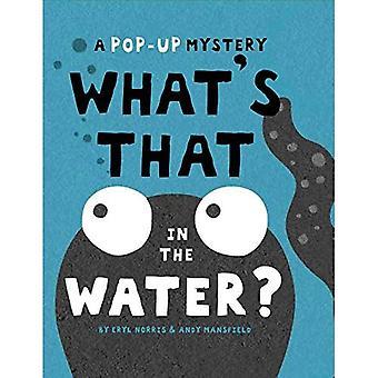 Qu'est-ce dans l'eau?