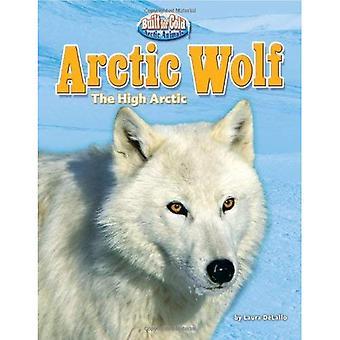 Poolwolf: Het Noordpoolgebied