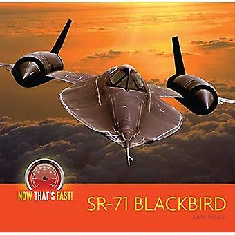 SR-71 Blackbird (plan) (nu är snabb!)