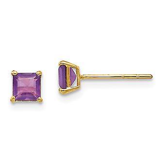 14k Gul guld poleret ametyst 4mm Square Post Øreringe smykker Gaver til kvinder