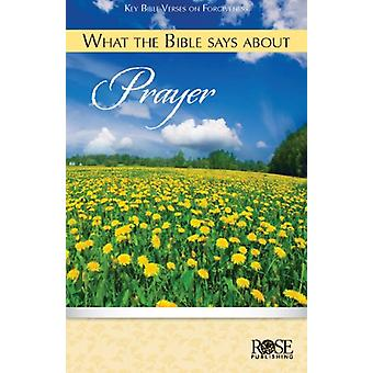 What the Bible Says about Prayer by Rose Publishing - 9781596364561 B