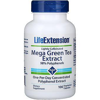 Prolongation de la durée de vie utile, extrait de thé vert méga, légèrement caféiné, 100 chapeaux végétariens