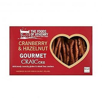 Foods Of Athenry - Hazelnut & Cranberry Gourmet Sodabread Toasts