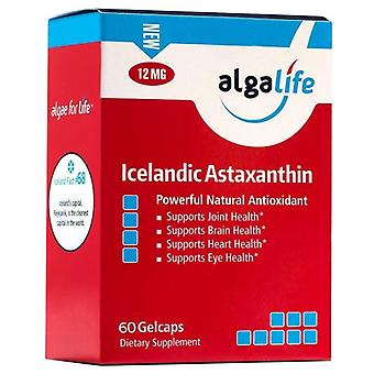 Algalife Islandais Astaxanthine, 12 mg, 60 Caps