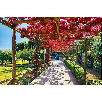 Wallpaper Mural Picturesque Path on Capr
