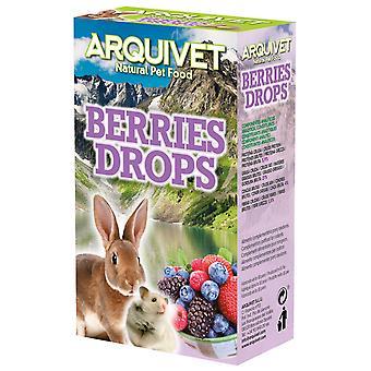 Arquivet Drops avec Fruits de la Forêt 65 Grammes. (Rongeurs , Snacks)