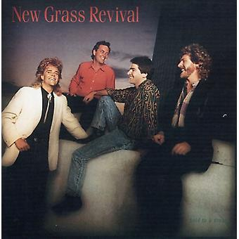New Grass Revival - Hold to a Dream [CD] USA import