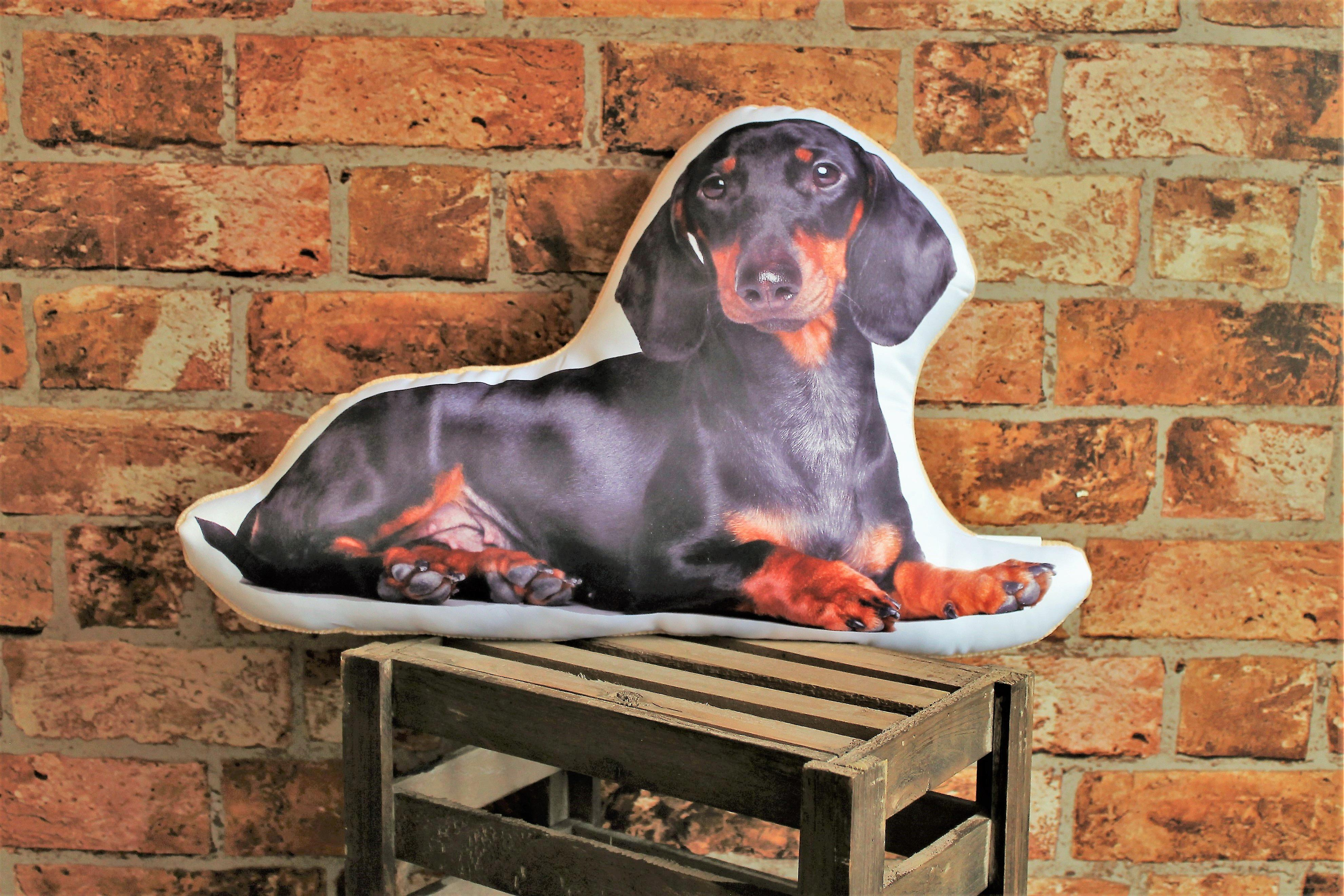 Adorable dachshund shaped cushion