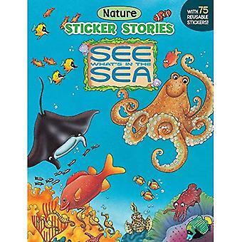 Voir ce qui est de la mer (Sticker Stories livre)