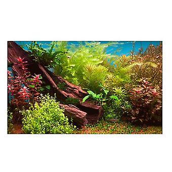 Sandimas Poster Aquarius 3D Aqua Garden (Fish , Decoration , Backgrounds)