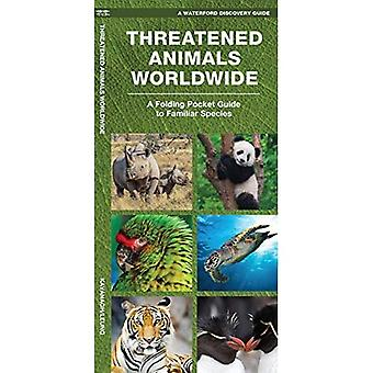 Waterford's Discovery Guide: Threatened Animals Worldwide: A Folding Pocket Guide to the Status of Familiar Species...