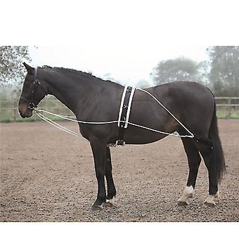 Shires Unisex Lunging Aid