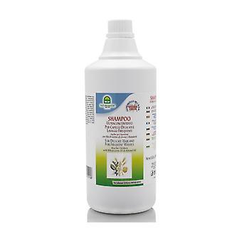 Wheat Germ Oil Shampoo 1 L