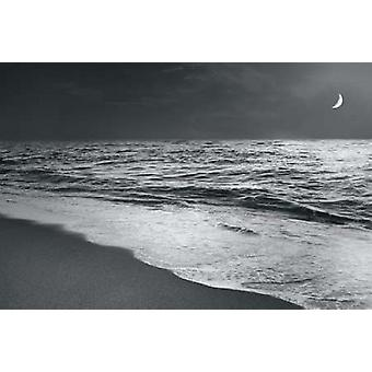 Moonrise Beach Black and White Poster Print by Sue Schlabach