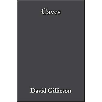 Caves: Processes, Development and Management, Vol. 0