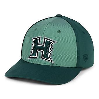 Hawaii Warriors NCAA TOW Mist verstelbare Snapback hoed