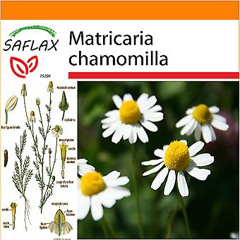 Saflax - Garden in the Bag - 300 seeds - Mayweed - Camomille sauvage - Camomilla - Manzanilla común - Echte Kamille