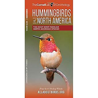 Hummingbirds of North America: The Eight Most Familiar North American Species (All About Birds Pocket Guide Series)