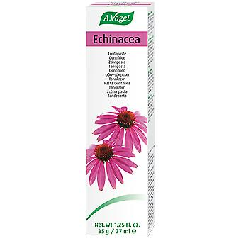 A.Vogel Toothpaste Dentaforce Echinacea 35 gr