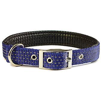 Arquivet Blue Smooth Nylon kaulakoru (koirat, kaulus kaulanauha, johtaa ja valjaat, pannat)