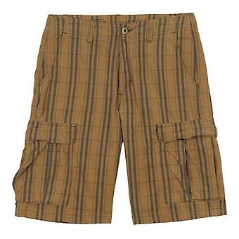 Patagonia all-wear cargo shorts