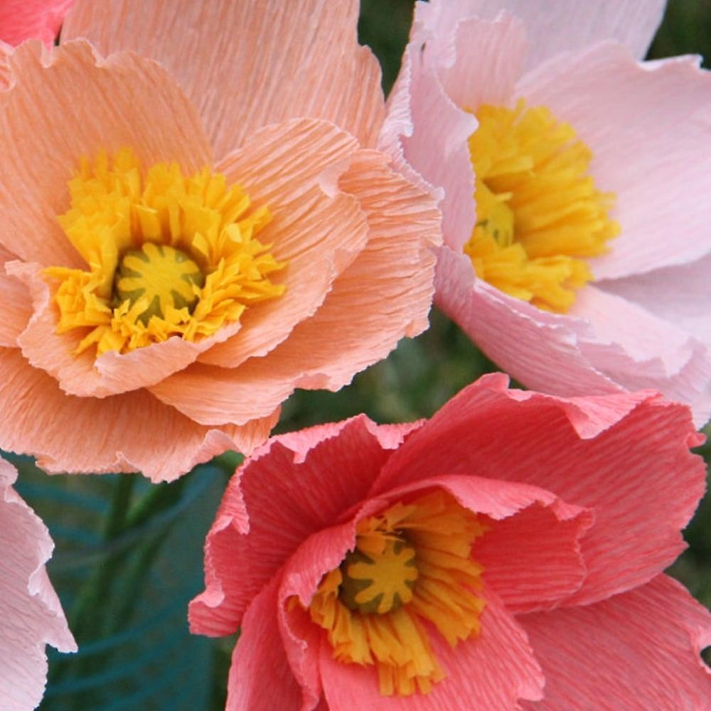 Clairefontaine/ /Papel pinocho color rosa p/álido