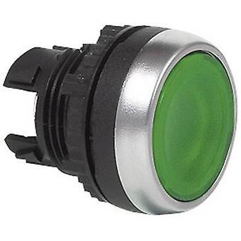 BACO BAL21CH20 L21CH20 zelená