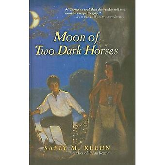 Mond von zwei dunklen Pferden