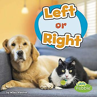 Left or Right (Location Words)