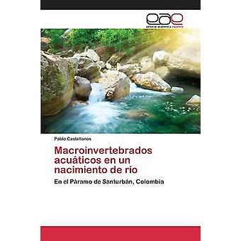 Macroinvertebrados acuticos en un nacimiento de ro por Castellanos Pablo
