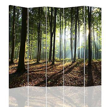Divisor de quarto, 5 painéis, duplo-face, lona, raias do sol na floresta