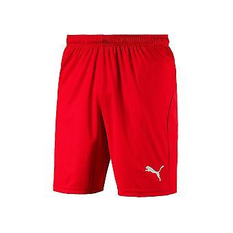 Puma Liga Σορτς Core 70343601 ποδόσφαιρο όλο το χρόνο παντελόνι άνδρες