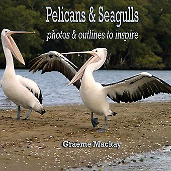 Pelicans & Seagulls - Photos and Outlines to Inspire - 1 by Graeme