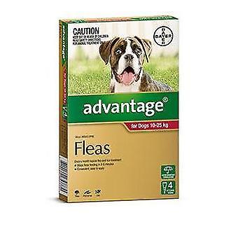 Het voordeel van rood 4 Pack grote honden 10-25kg