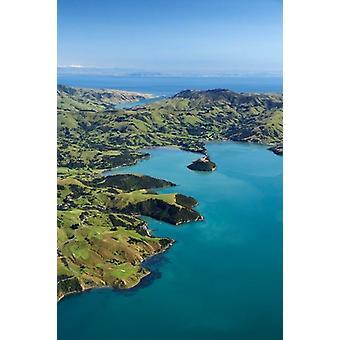 Akaroa Harbor Canterbury Etelä-saari Uudessa-Seelannissa Juliste Tulosta David seinä