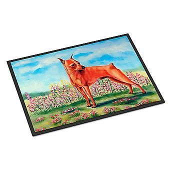 Caroline's Treasures 7516MAT Min Pin Zerbino esterno interno, 18 x 27, Multicolor