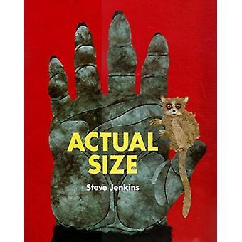 الحجم الفعلي من قبل ستيف جينكينز وجينكينز