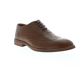 Steve Madden  Mens Brown Leather Dress Lace Up Oxfords Shoes
